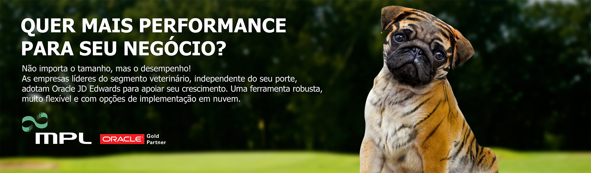 oracle jd edwards para segmento veterinário